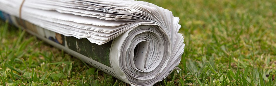 newspaper on lawn
